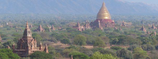 Ed Wilkins in Myanmar: Week 28